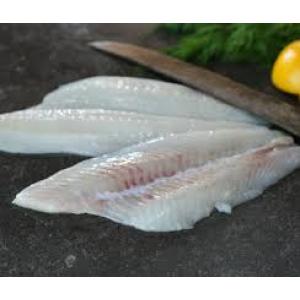 Flounder Fillet
