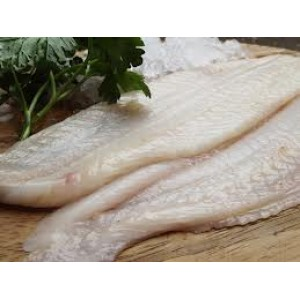 Lemon Sole Fillet